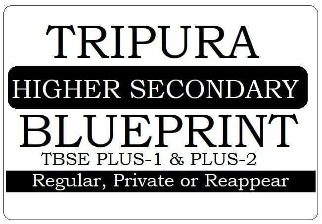 Tripura HS Blueprint 2020