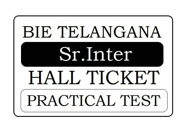 TS 1st and 2nd Inter Practical Test 2020