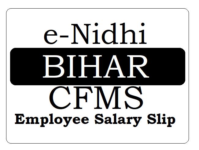 Bihar CFMS Employee Salary Slip Download